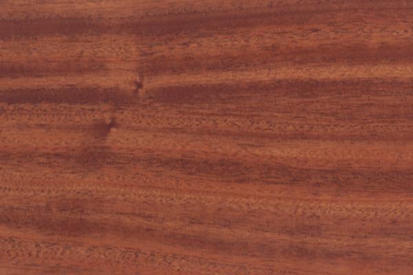 Caoba africana