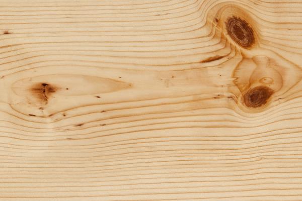 Pine, Ponderosa